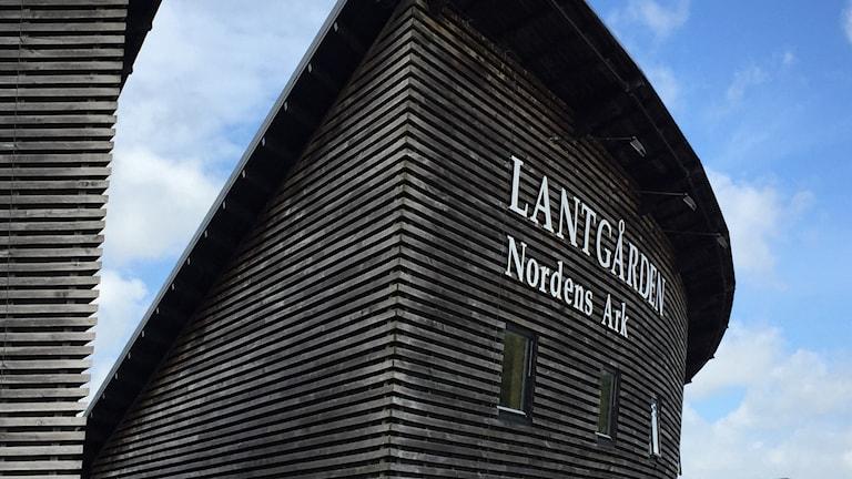 Lantgården på Nordens ark. Foto: Susanna Wictorzon/Sveriges Radio.