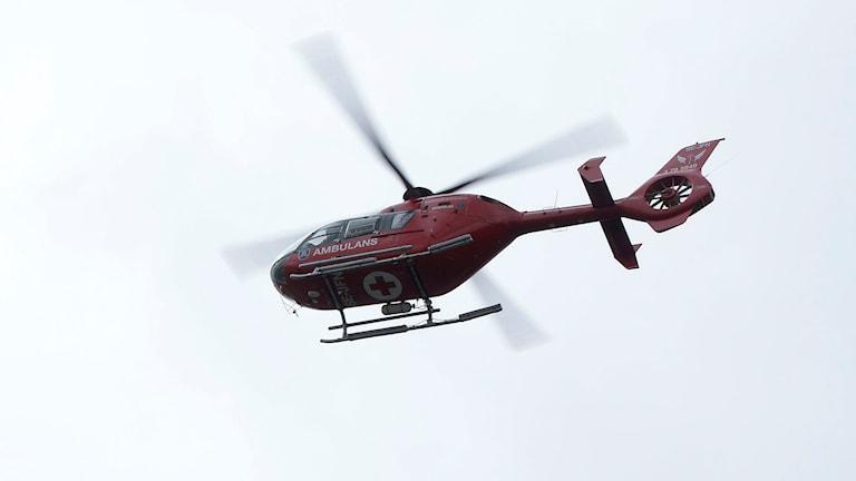 En ambulanshelikopter i luften. Foto: Bertil Ericson