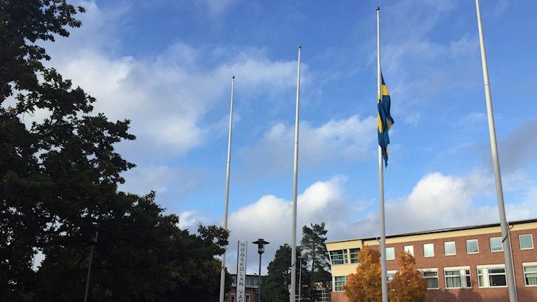 Flagga på halv stång utanför stadshuset i Trollhättan. Foto: Victor Jensen/Sveriges Radio