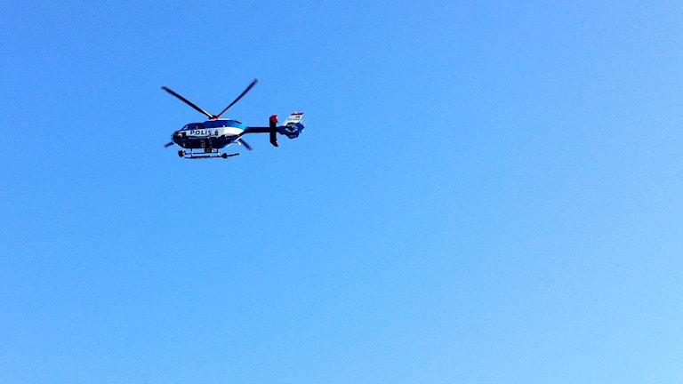 En polishelikopter som deltar i sökandet. Foto: Max Lindahl/Sveriges Radio