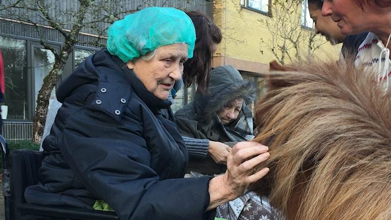 Marit, en av de som passade på att träffa hästarna idag.