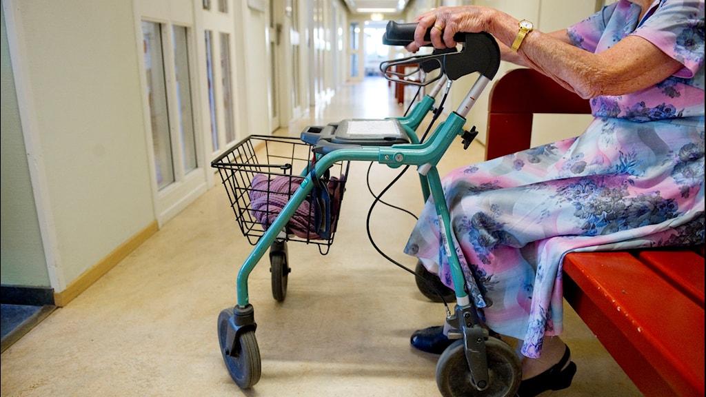 En äldre dam sitter på en bänk intill sin rullator i en korridor på ett äldreboende. Kvinnan på bilen är inte densamma som utsattes för våld. Foto: Jessica Gow/SCANPIX