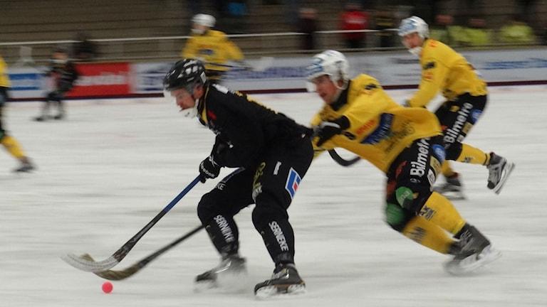 Bandy Gripen närkamp Foto: Bengt Israelsson/Sveriges Radio