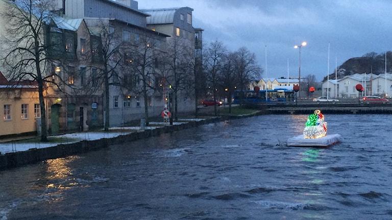Högt vatten i Bäveån i Uddevalla. Foto: Susanna Wictorzon/Sveriges Radio.