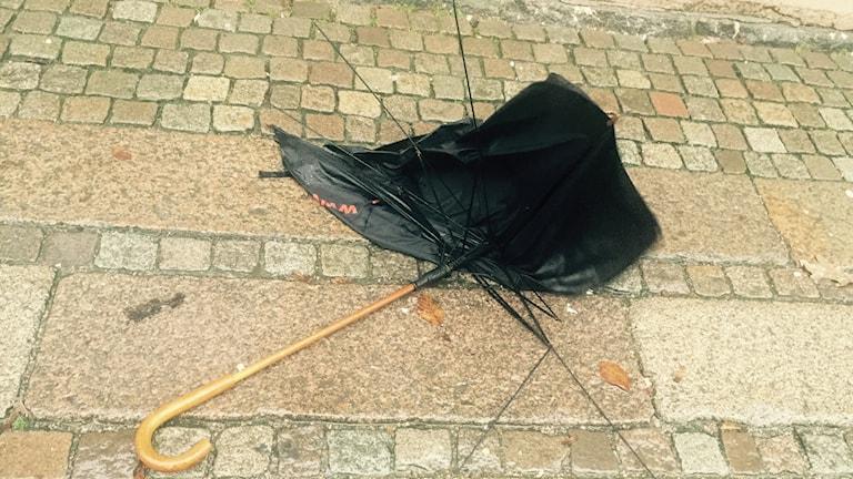Ett blött och trasigt paraply. Foto: Susanna Wictorzon/Sveriges Radio.