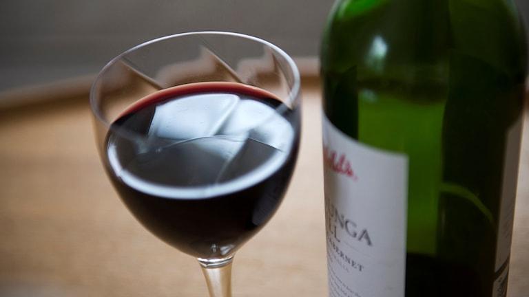 Ett glas rött vin och en vinflaska. Foto: Fredrik Sandberg/TT.