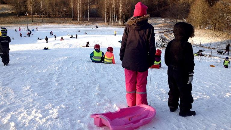 Barn med en pulka på toppen av den snöiga pulkabacken. Foto: Margaretha Valdemarsdotter/Sveriges Radio.