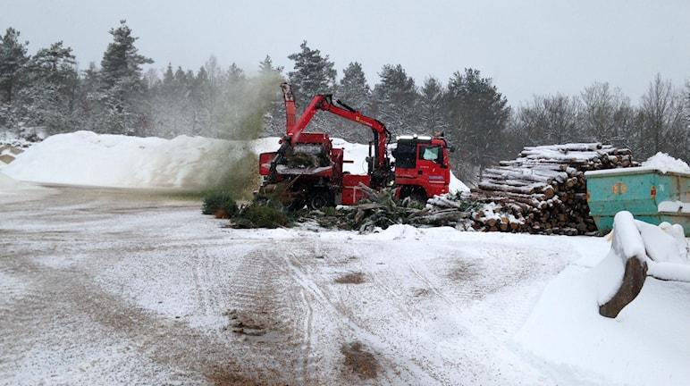 Julgran blir flis Uddevalla Energi