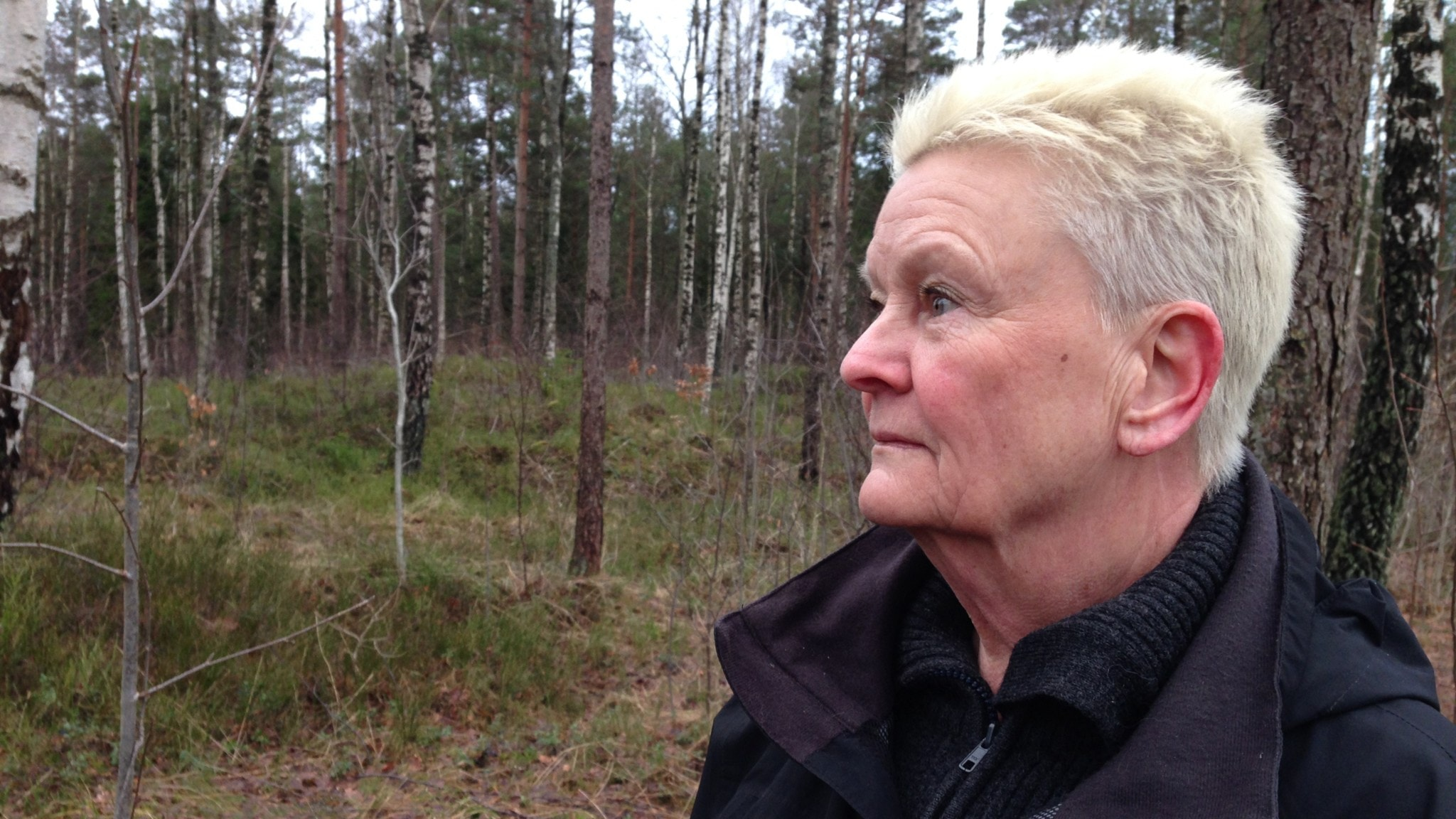 Margareta ljunggren