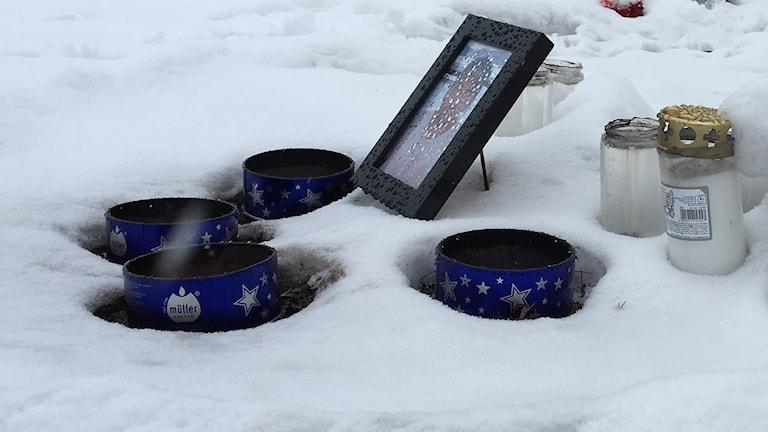 Ljus och fotografier i snön.