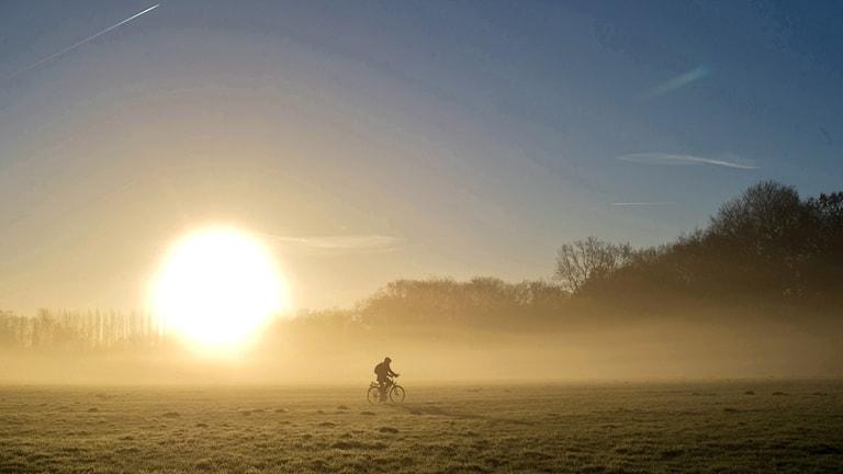 En man cyklar på ett fält vid en soluppgång.