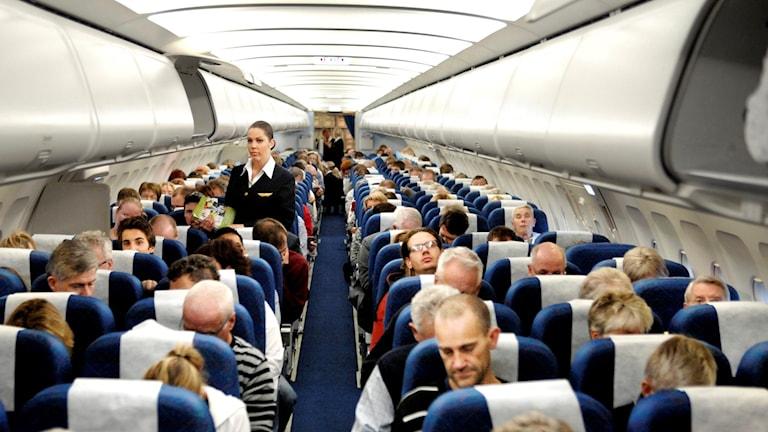 Bild inifrån ett fullsatt flygplan. En flygvärdinna står ett par rader ner på vänster sida.