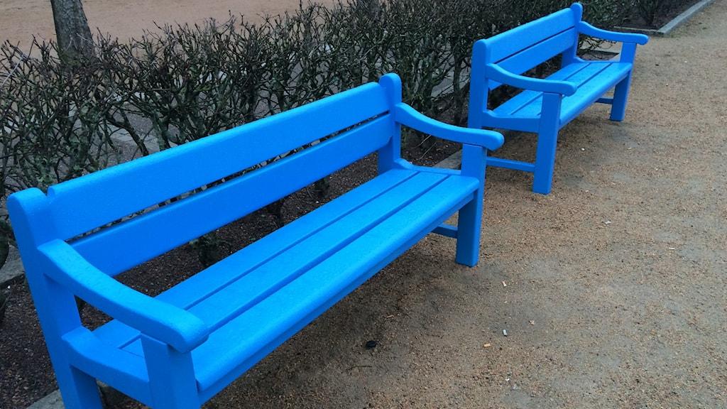En blå bänk i Uddevalla. Det har fått många att reagera.
