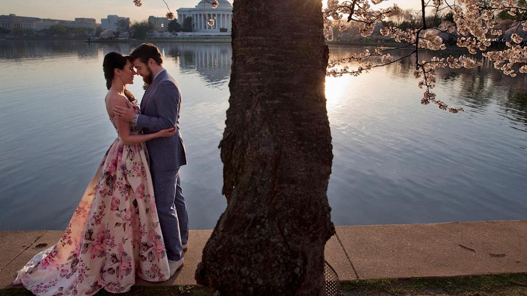 Ett par gifter sig under ett körsbärsträd.