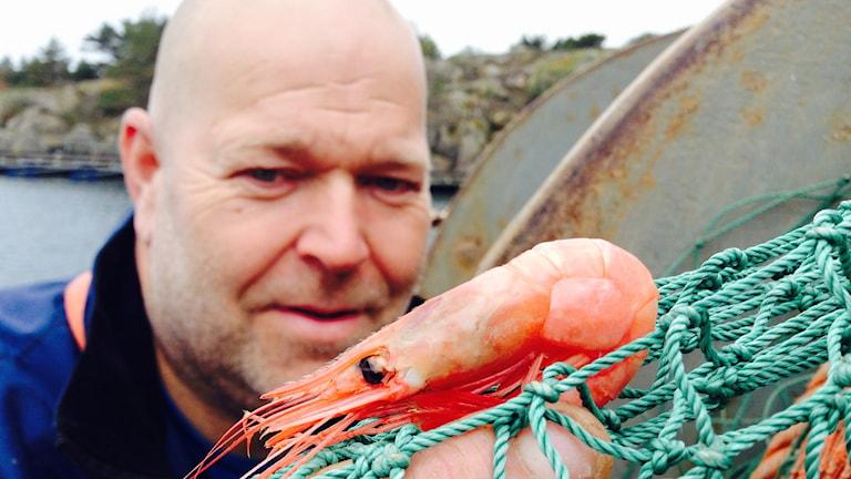 Jan-Olof Hellberg, räkfiskare vid Resö fiskehamn i Tanums kommun.