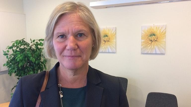 Ann-Marie Begler generaldirektör