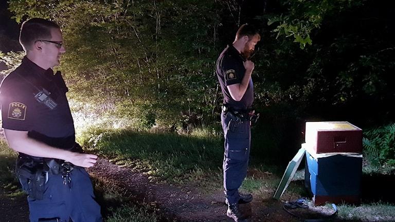 poliser tittar på en bikupa