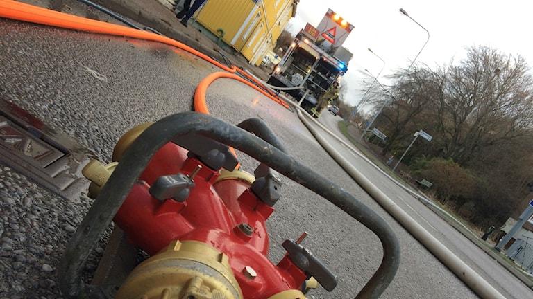Bild på brandslangar.