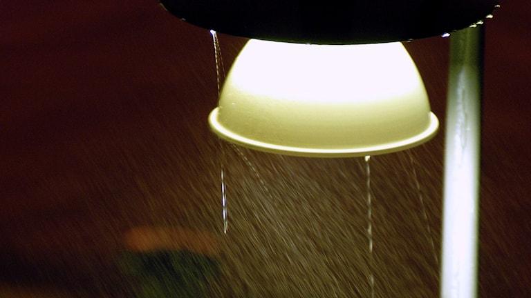 En närbild på en gatulampa i regn. Foto: Hasse Holmberg