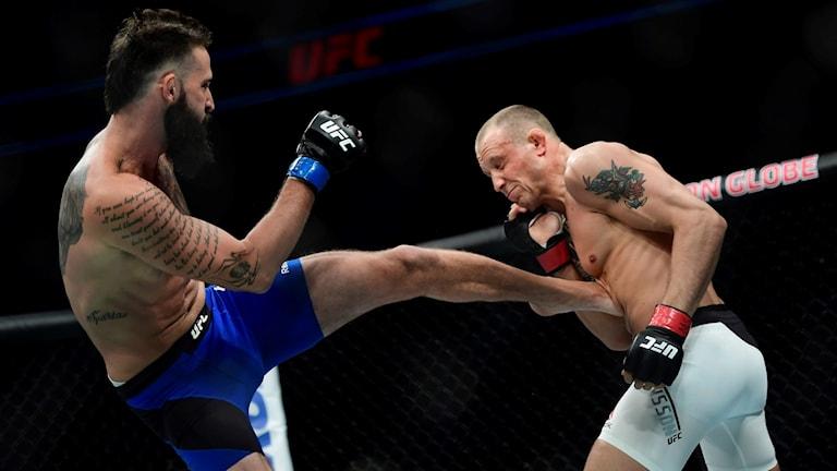 UFC Jack Hermansson i oktagonen.