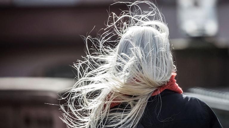 Bild på en kvinna med ruffsigt hår.