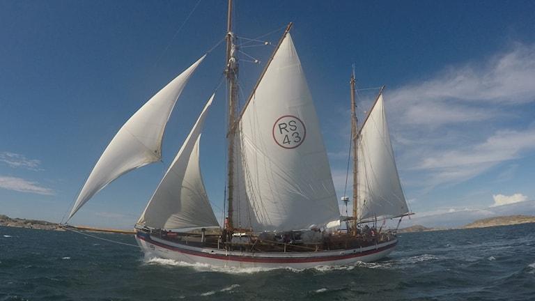 strandstäd fartyg kampanj, båt med segel i hav