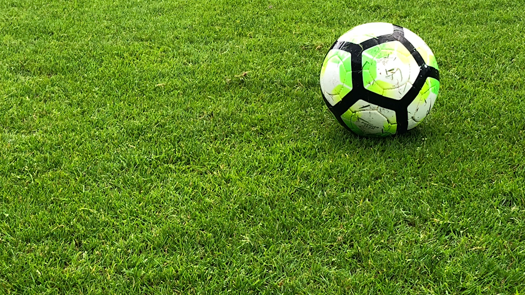 Fotboll på en grön gräsmatta