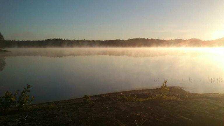 Soluppgång och dimma. Foto: Åse Johansson