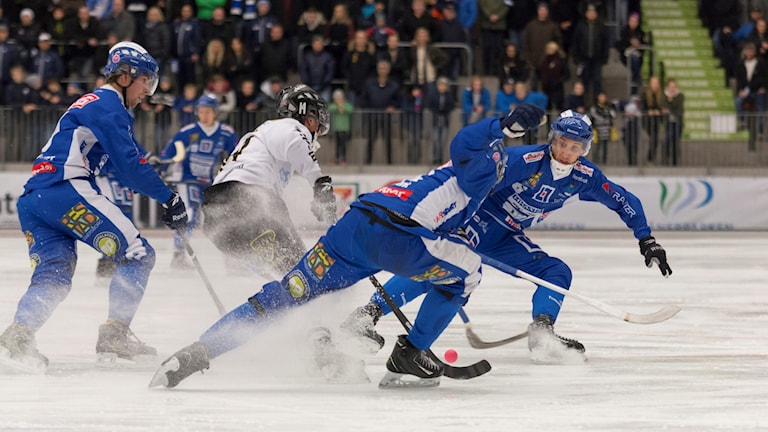 Bandy IFK Vänersborg-Gripen