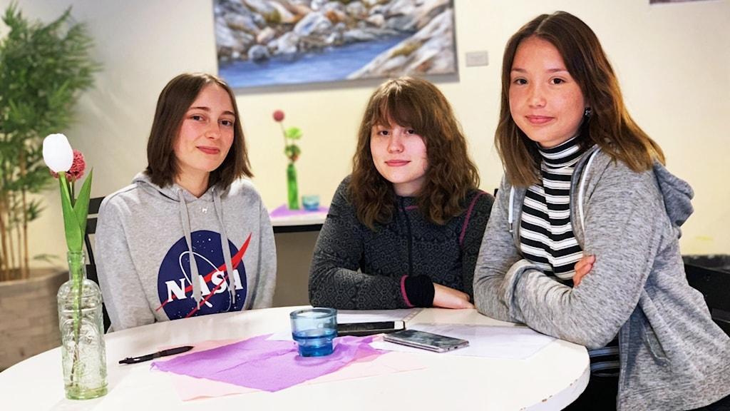 Elever på Gullmarsgymnasiet i Lysekil