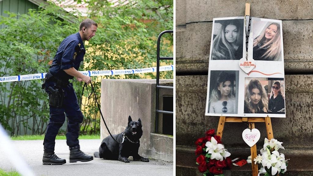 Polis med sökhund och Wilma Anderssons minnesplats.