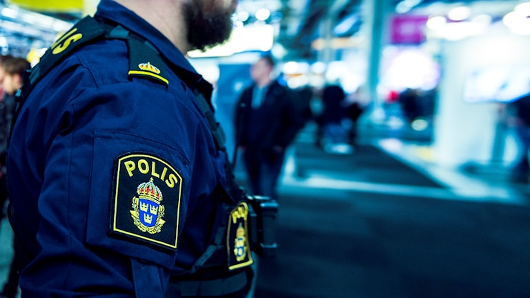 Polis i profil