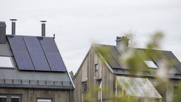 Två hustak med solceller