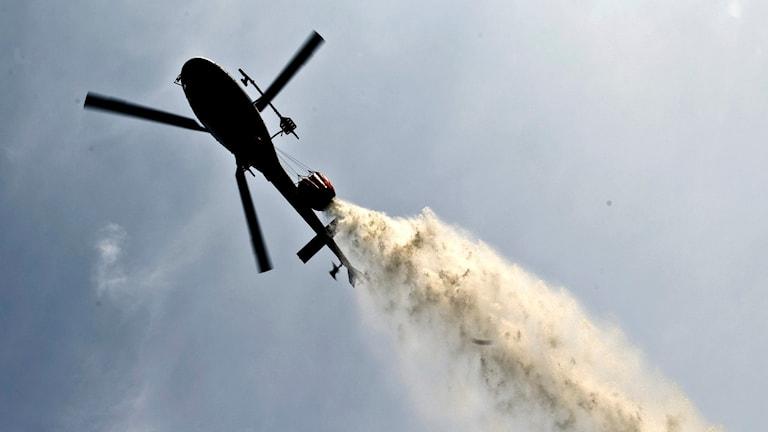 Helikopter som vattenbombar