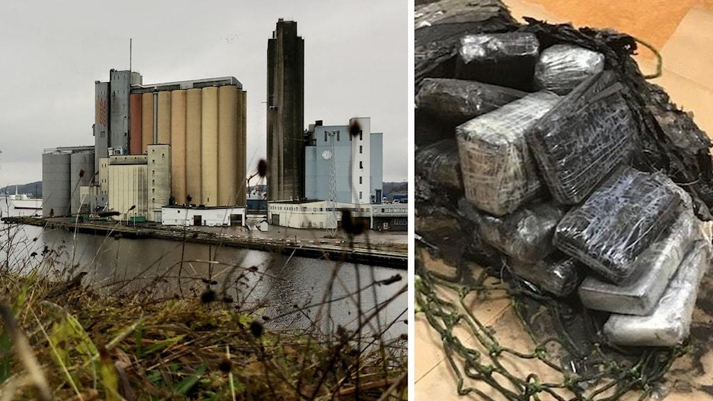 Ett bildmontage som visar Uddevalla hamn och ett beslag av kokain som gjordes i januari 2020.