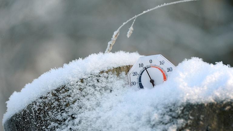 Bild på termometer i snö