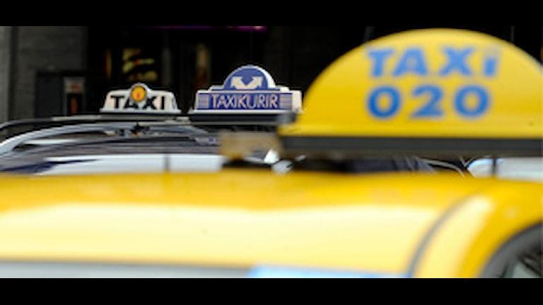 Skyltar på taxibilar. Foto: Bertil Ericson/Scanpix