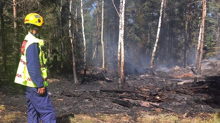 En skogsbrand har härjat i hunneberg