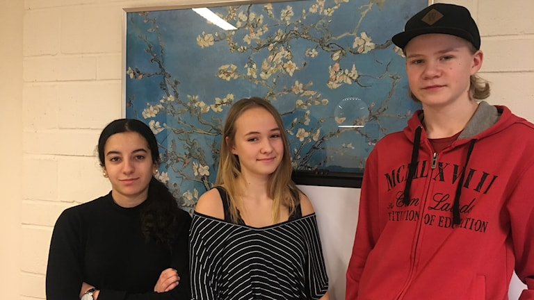 Gabriella Ohan, Klara Malm och William Larsson står uppradade framför en blå tavla.