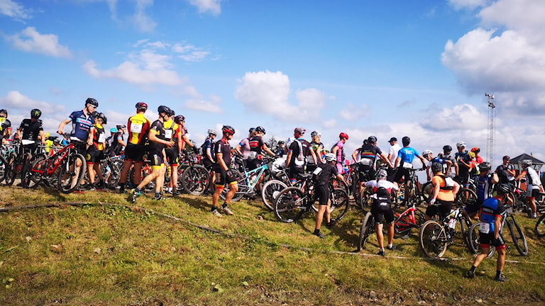 Många cyklister