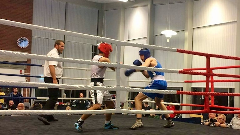 Taher Ibrahimzad i semifinalen i junior-SM i boxning i Kumla Foto: Alnes Omerovic
