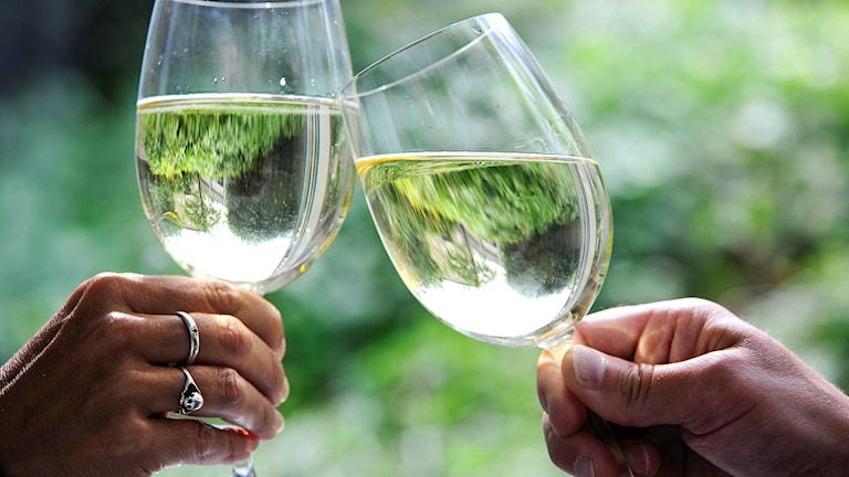 Två personer skålar i vitt vin.