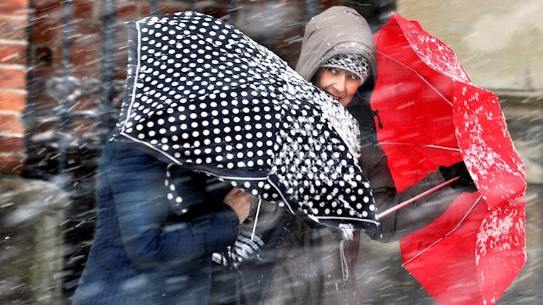 Närbild på två kvinnor som skyddar sig mot snöblandat regn med sina paraplyer. Foto: Tomas Oneborg / SvD / TT