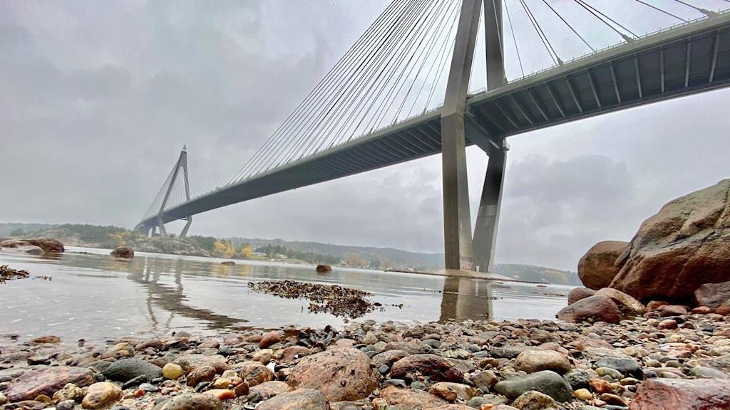 Uddevallabron en höstig dag, sett nedifrån. Bron ser gigantisk ut med sina praktfulla spann.