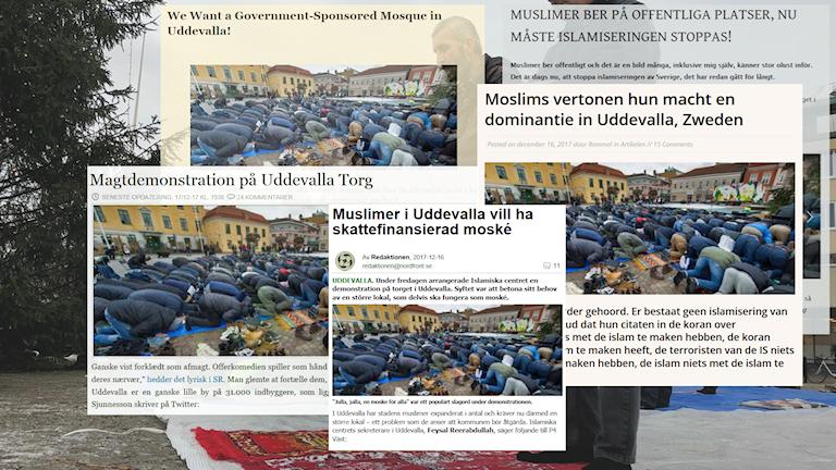 Bilder på olika rubriker från högerextrema sajter. Rubriker på danska, tyska och svenska.