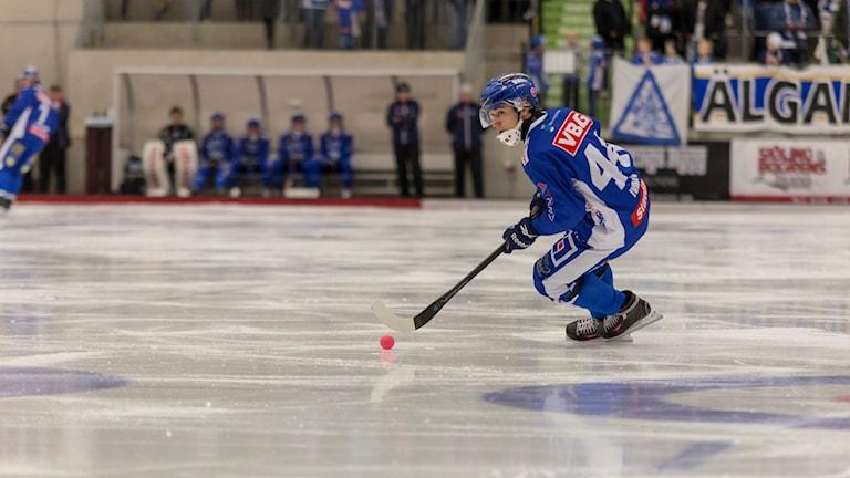 Bandy IFK Vänersborg Nikita Ivanov med bollen i fart