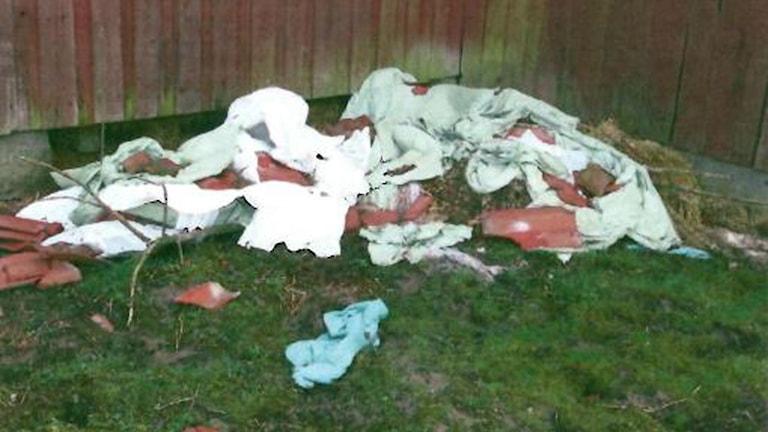 Under plasten bakom ladugården hittade djurinspektörerna fem döda får och fyra döda lamm. Foto: länsstyrelsen.