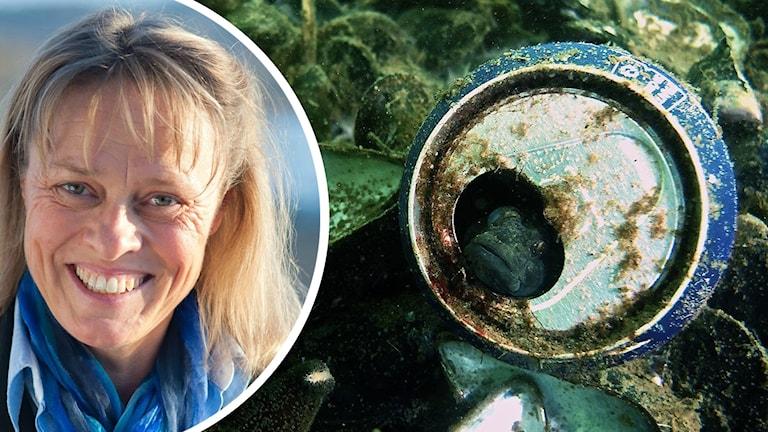 Helena Bredin och en bild på en ölburk i havet