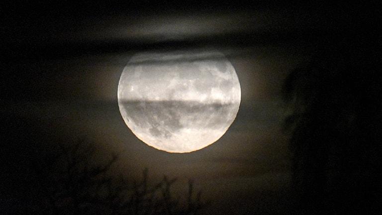 Bild på en supermåne fotad öster om Kristianstad.