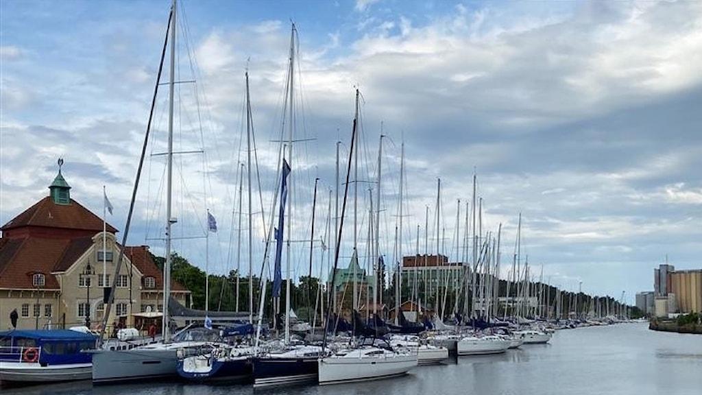 Segelbåtar i södra hamnen i Uddevalla timmar innan starten av Bohusracet 2021